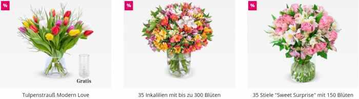 Blume Ideal Aktionen