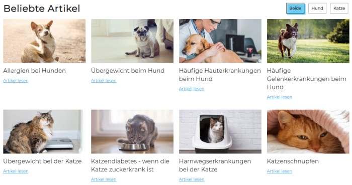 Medoca Ratgeber Hund & Katze